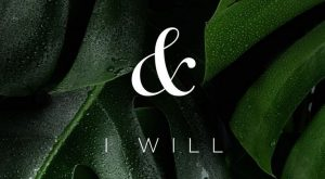 I can and I will. motivation, positive thinking, quotes, positive quotes, greenery