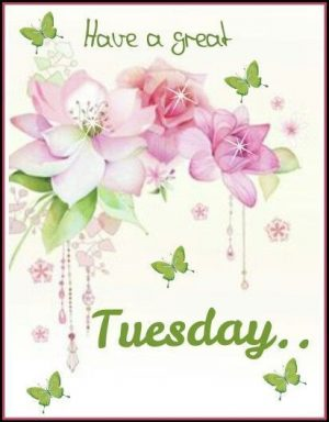 Have A Great Tuesday tuesday tuesday quotes tuesday pictures tuesday images great tuesday tuesday…