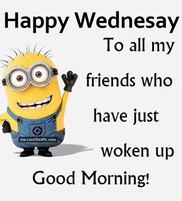 Hump Day Funny Minion Quotes: Have A Nice Wednesday