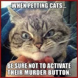 Dont activate the murder button….