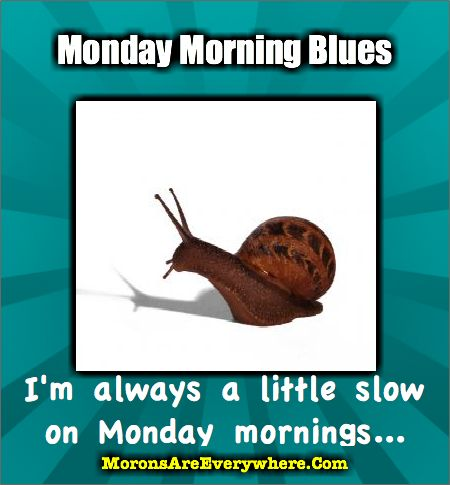Funny Monday Quotes Fit For Fun
