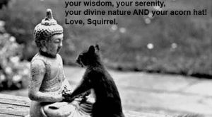 Funny Squirrel Quotes 025