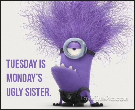 Funny Tuesday Quotes 192