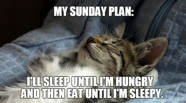 My Sunday plan_ Sleep until Im hungry and then eat until I
