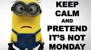 funny minion quotes 0008