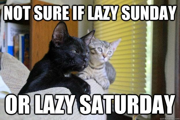 Lazy Sunday Memes – A funny lazy Sunday meme from Slapwank, home to the…