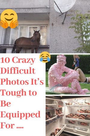"10 Crazy Difficult Photos It's Tough to Be Equipped For ……. #Crazy explore Pinterest"">…"