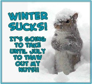 Funny Winter Quotes and Sayings