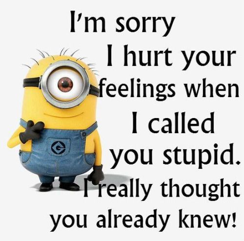 Funny Minion Quotes 016