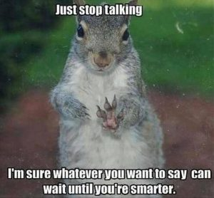 Funny Sqirrel Quote 059