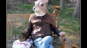costume disguise funny squirrel 8177432320