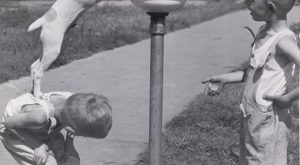 Giving a pal a boost on a hot day, August 28, 1938