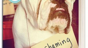The bad Dog Cellection Dog Shaming 62