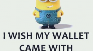Funny Minion Quotes 18