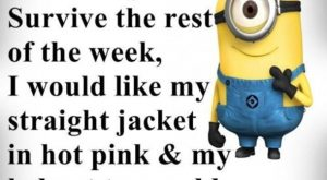 Funny Minion Quotes 22