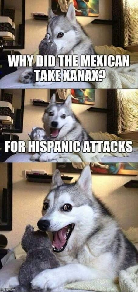 """50+ Funny Husky Memes That Will Keep You Laughing For Hours #husky explore Pinterest"""">…"""