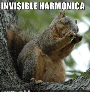 Squirrels with funny caption 31
