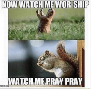 Squirrels with funny caption 8